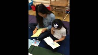 Guided Reading Lesson Kindergarten and First Grade