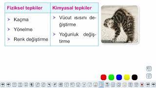 Eğitim Vadisi 9.Sınıf Biyoloji 1.Föy Canlıların Ortak Özellikleri Konu Anlatım Videoları