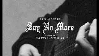 Say No More - Ceschi  (Video)