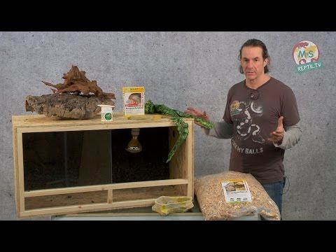 Reptil TV - Folge 75 - DIY Reptilien Holz Terrarium