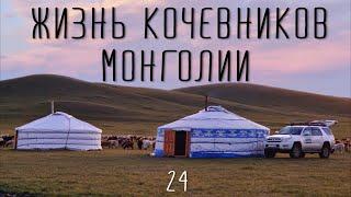 Монголия. Кочевая жизнь. Они в этом деле лошадь съели