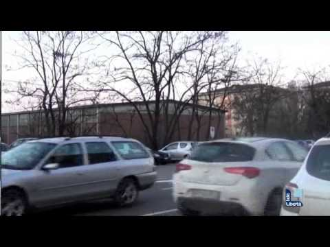 Sto cercando il sesso in Zhitomir