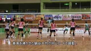 マッチポイントで珍事Vプレミアリーグ女子2012/13デンソー対JT