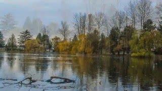 Sardis Park Chilliwack BC
