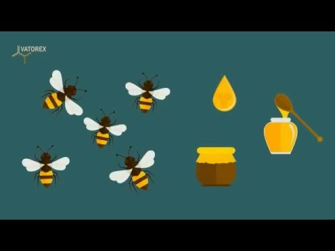Varroabekämpfung durch Hyperthermie