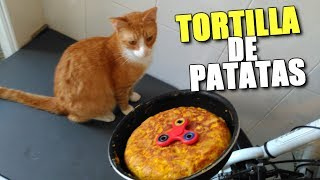 HAGO TORTILLA DE PATATAS CON LOS NUEVOS GATOS + Regalo Songmics