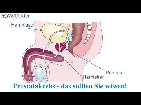 Enge Formation in der Prostata