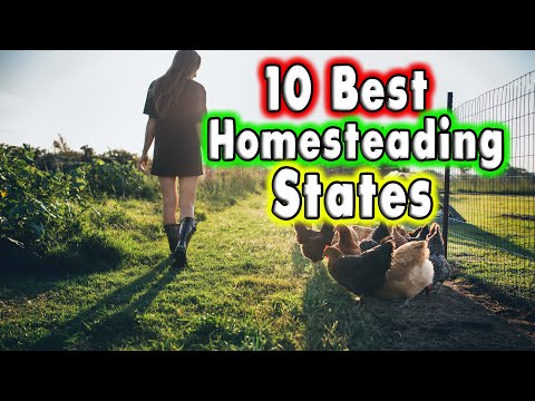 Top 10 Best States for Homesteading