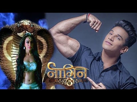 Naagin 3: Prince Narula's TRUTH gets REVEALED in the show