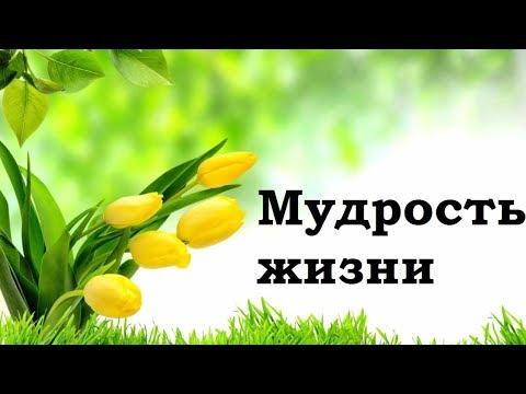 Как научиться мудрости жизни. Валентин Даценко