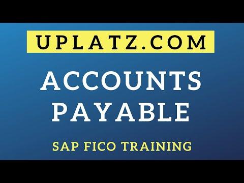 Accounts Payable | SAP FICO Training & Certification | SAP FICO ...