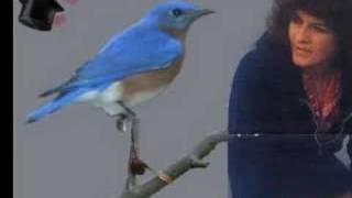 Donna Fargo- Hello Little Bluebird