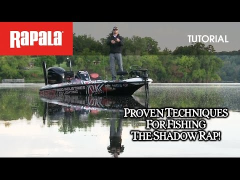 Воблер RAPALA SHADOW RAP SDR07-S фото №1