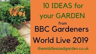 Ideas for your garden from BBC Gardeners World Live 2019