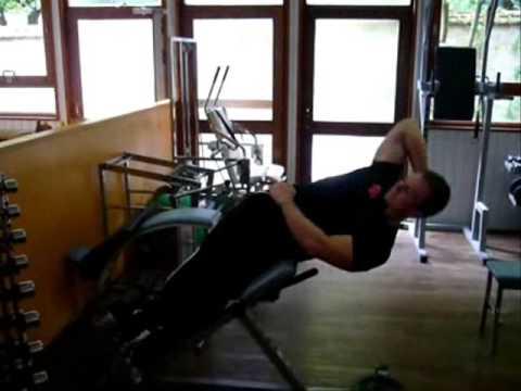 Les unités à moteur du muscle