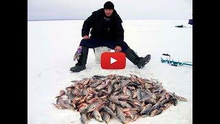 Зимняя рыбалка туры на рыбалку