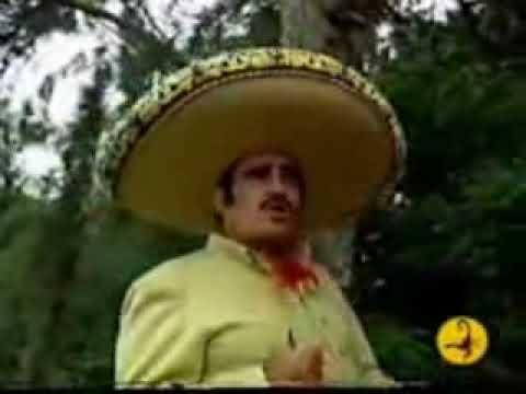 Vicente Fernández - Conoci a tu Esposo