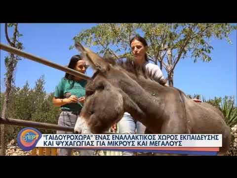 Η Γαϊδουροχώρα σώζει ζωάκια και προσφέρει ψυχαγωγία