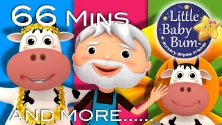 BINGO | Learn with Little Baby Bum | Nursery Rhymes for Babies | Songs for Kids