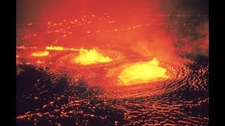 Ученые: жизнь на Земле на пороге вымирания. Стала известна причина крупнейшей катастрофы на Земле.