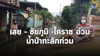 น้ำท่วมหนักหลายจังหวัดอ่วม ชาวบ้านเลี้ยงวัวเศร้าต้องพาไปเลี้ยงริมถนน : Matichon TV