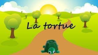 Bricolage de tortue pour enfant