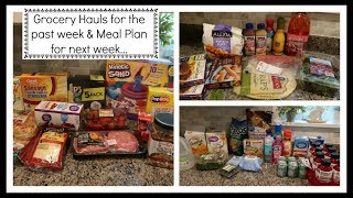 Wal-Mart Grocery Hauls & My Meal Plan for next week