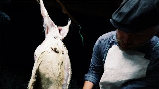 The (HARD) Reality Of Farm Life ~ Killing Our Sheep Before The Parasites Do