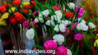Colourful flowers at Dilli Haat