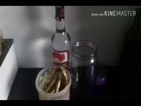 Licor de Abacaxi (casca)