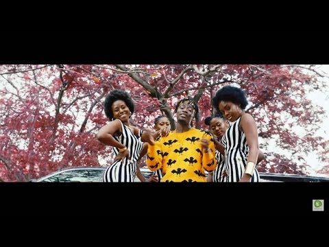 Video: Fancy Gadam - YakaChana feat. Mr Eazi