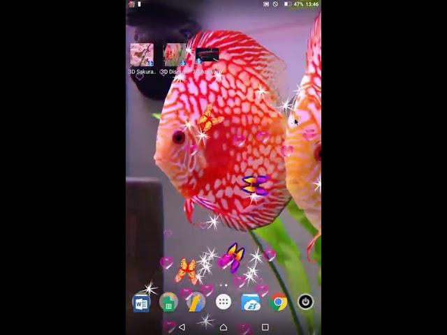 3D Discus Aquarium Wallpapers