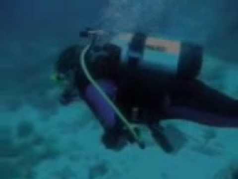 Insel Cres, Diving Center Cres, Camp. Kovacine, Tauchplatz SV Blaz, Insel Cres,Kroatien