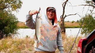 Рыбалка в районе ленинска