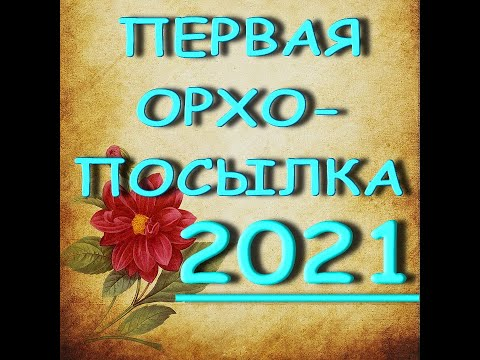 """КАК ДОЕХАЛА?Первая ОРХО-ПОСЫЛКА,2021,группа """"ORCHIDS-ECLAT.ОРХИДЕИ""""."""