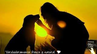 Классическая музыка для исцеления больных собак и кошек - 1 ЧАС #RUмузыка