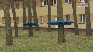 Budowa parku linowego w Kozienicach