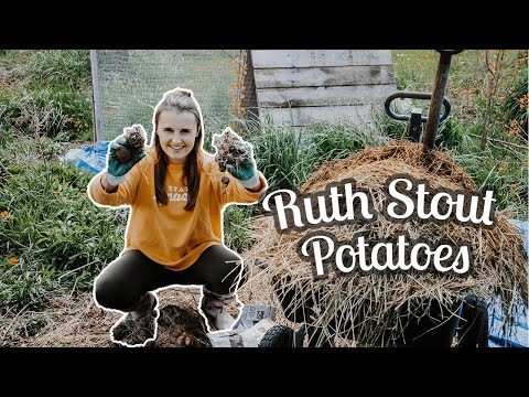 , title : 'A Ridiculously Easy Way to Grow Potatoes!
