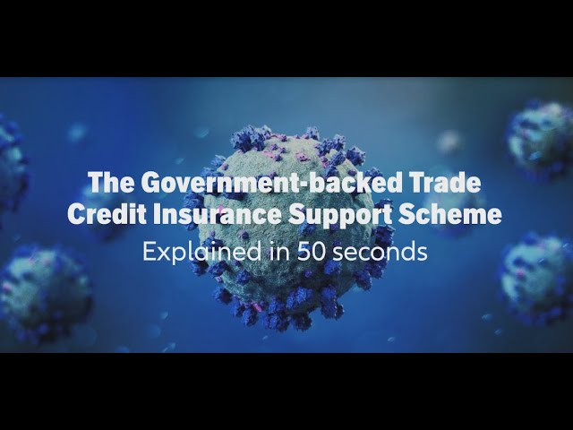 Government support scheme