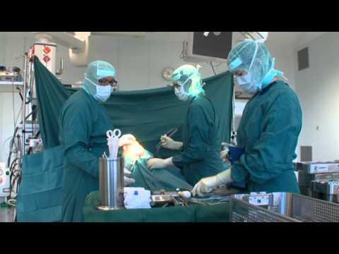 Vaskulös die Chirurgien und die Gynäkologie