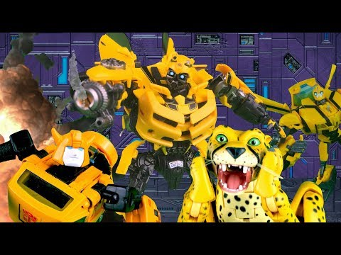Bumblebee VS Bumblebee VS Cheetor! Transformers Stop Motion | Feat. JobbytheHong | Toy Animation |