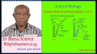 Locomotion in animals lesson 1 of 2