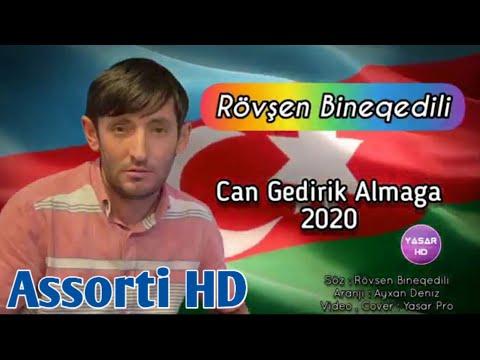 Rovsen Bineqedili - Can Gedirik Almaga 2020 ( Gorsun O Daglar Yene Boz Qurdunu )