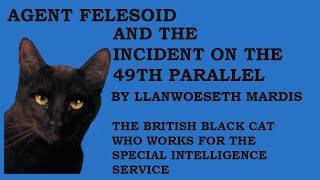 This is the video book trailer for Agent Felesoid and the Incident on the 49th Parallel