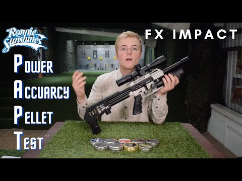 FX Impact Test