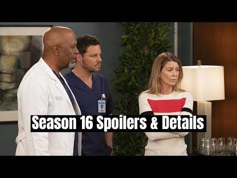 Grey's Anatomy Season 16 Spoilers & Details