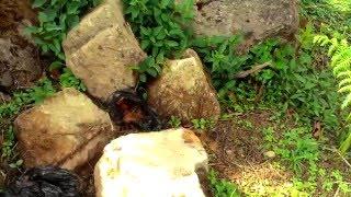 Gambar cover watu lumpuk sumowono