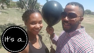 Our Gender Reveal | IVF Success