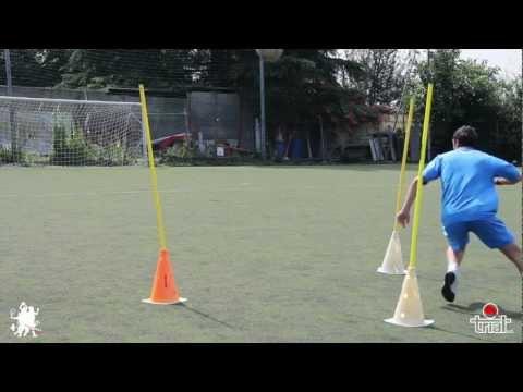 Popov ginnastica video articolazioni