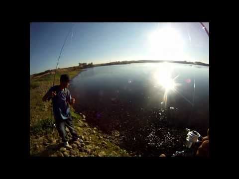 Marysville local bass pond fishing part 1